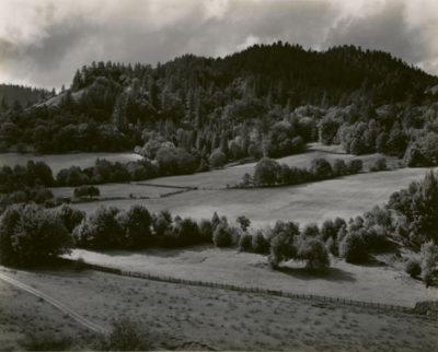 Edward Weston, Eel River, 1937