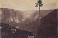 Carleton Watkins, Best General View, Yosemite, c. 1867