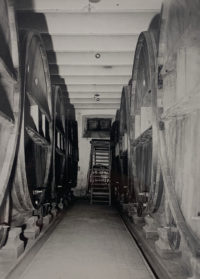Anonymous, Wine Cellars, Early 1900s