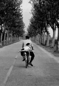 Elliot Erwitt, Provence, 1955