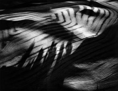 William Garnett, Tree Shadows on Grain Farm, Montezuma Hills, California, 1977