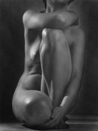 "Ruth Bernhard, Classic Torso, 1952, Gelatin Silver Print, 14"" x 11"""