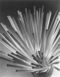 "Ruth Bernhard, Straws, 1930, Platinum Print, 8"" x 5"""