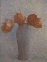 "Jeane Birdsall, Untitled (Still Life), 1990, Gum Bichromate, 4"" x 3"""
