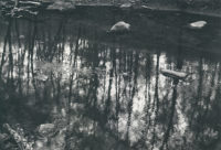 "Paul Caponigro, Merced River, Yosemite, California , 1974, 16"" x 20"""