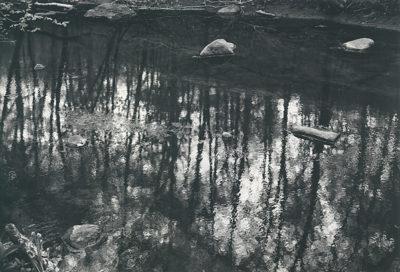 "Paul Caponigro, Merced River, Yosemite, California , 1974, 16"" x 20"""