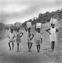 "Margo Davis, Carrying Home Mangoes, Antigua, 1970, 20"" x 20"""