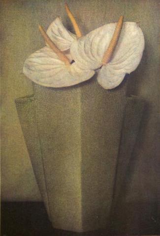 "Sheila Metzner, Anthuriums, 1985, Unique Fresson Print, 19"" x 13"""