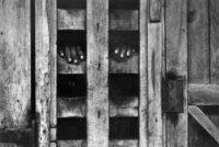 W. Eugene Smith, Hands In Stockade, Africa, 1954