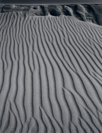 Ansel Adams, Sand Dunes, Oceano, California, 1950