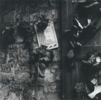 Dorothea Lange, Still Life