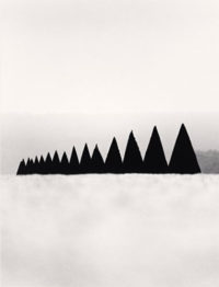 Conical Hedges, Versailles, France, 1988