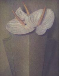 Sheila Metzner, Anthuriums, 1985